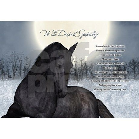 Sympathy Quotes Loss Of Horse Quotesgram Dedication To The Loss