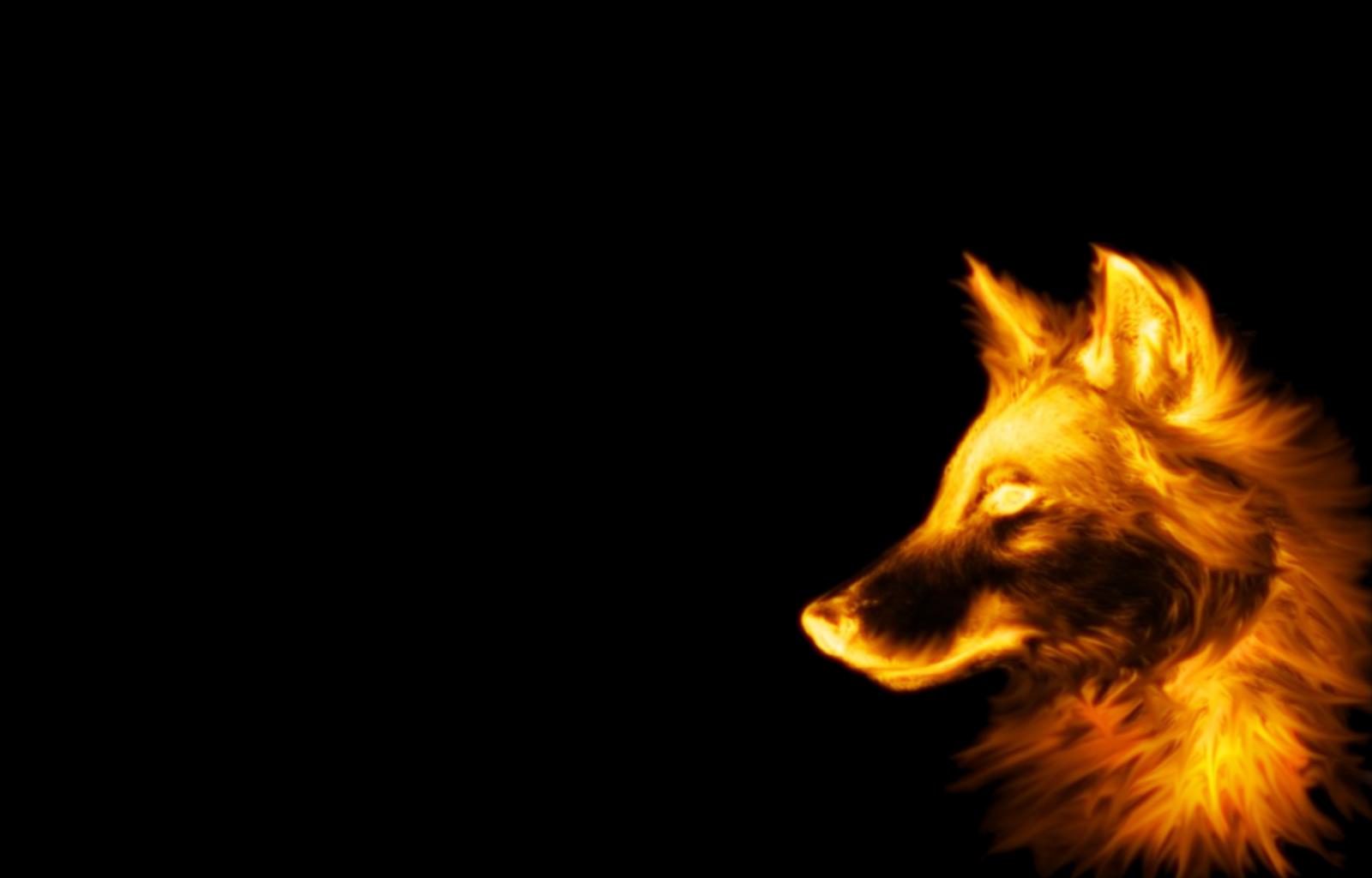 Dark Wolf Wallpapers Wallpaper HD Pinterest
