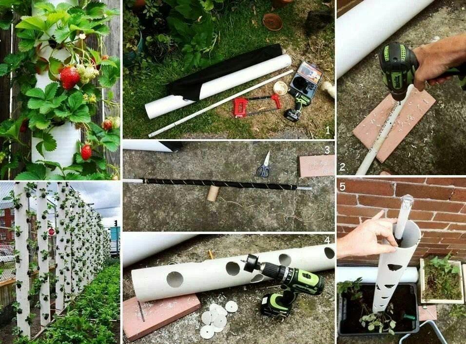 Paso a paso para hacer un jardin vertical con tubo de pvc - Ideas para hacer un jardin ...