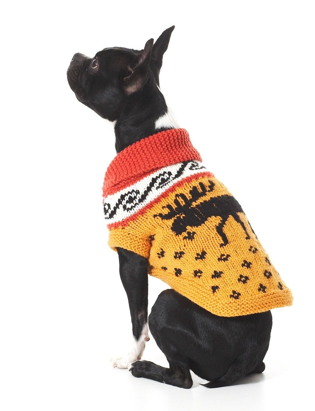 Cowichan Style Dog Coat - FREE PATTERN | Knitting for dogs | Pinterest