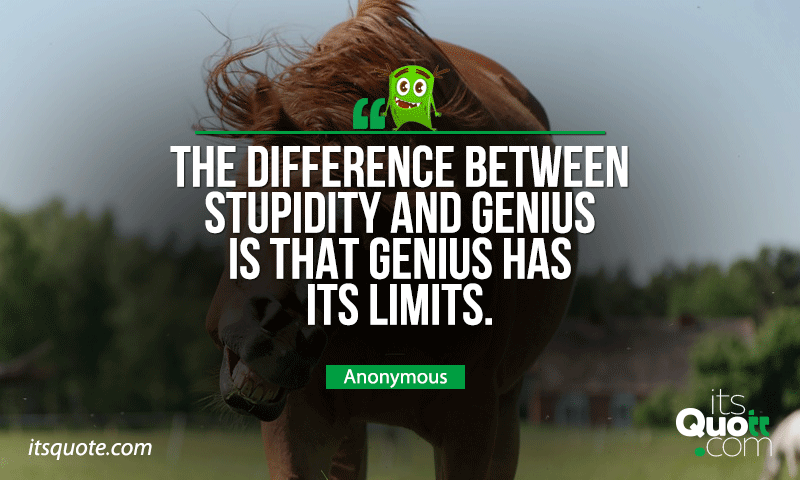 Anonymous Funny Quotes Itsquote Com In 2020 Funny Quotes Quotes Genius