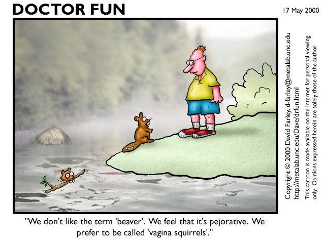 Humor, Irony, and Satire