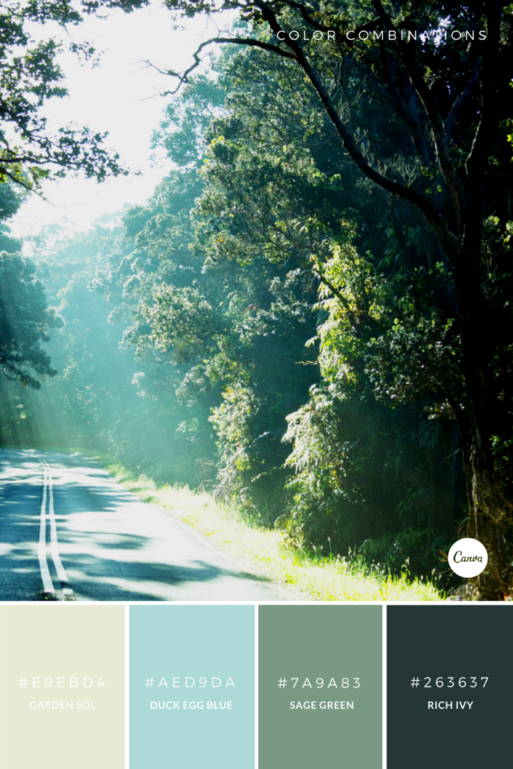 color combinations nature s tones try this fresh palette out in rh pinterest com