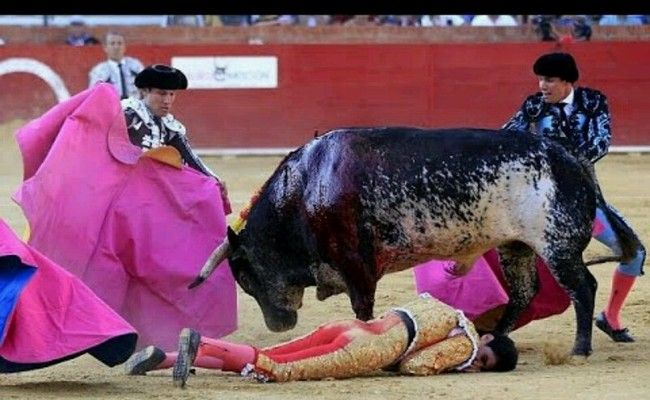'Killer Bull' Fatally Pierces Heart of Star Matador, Victor Barrio This makes my heart sing, he deserves what he got NO PITY FOR A demon.!
