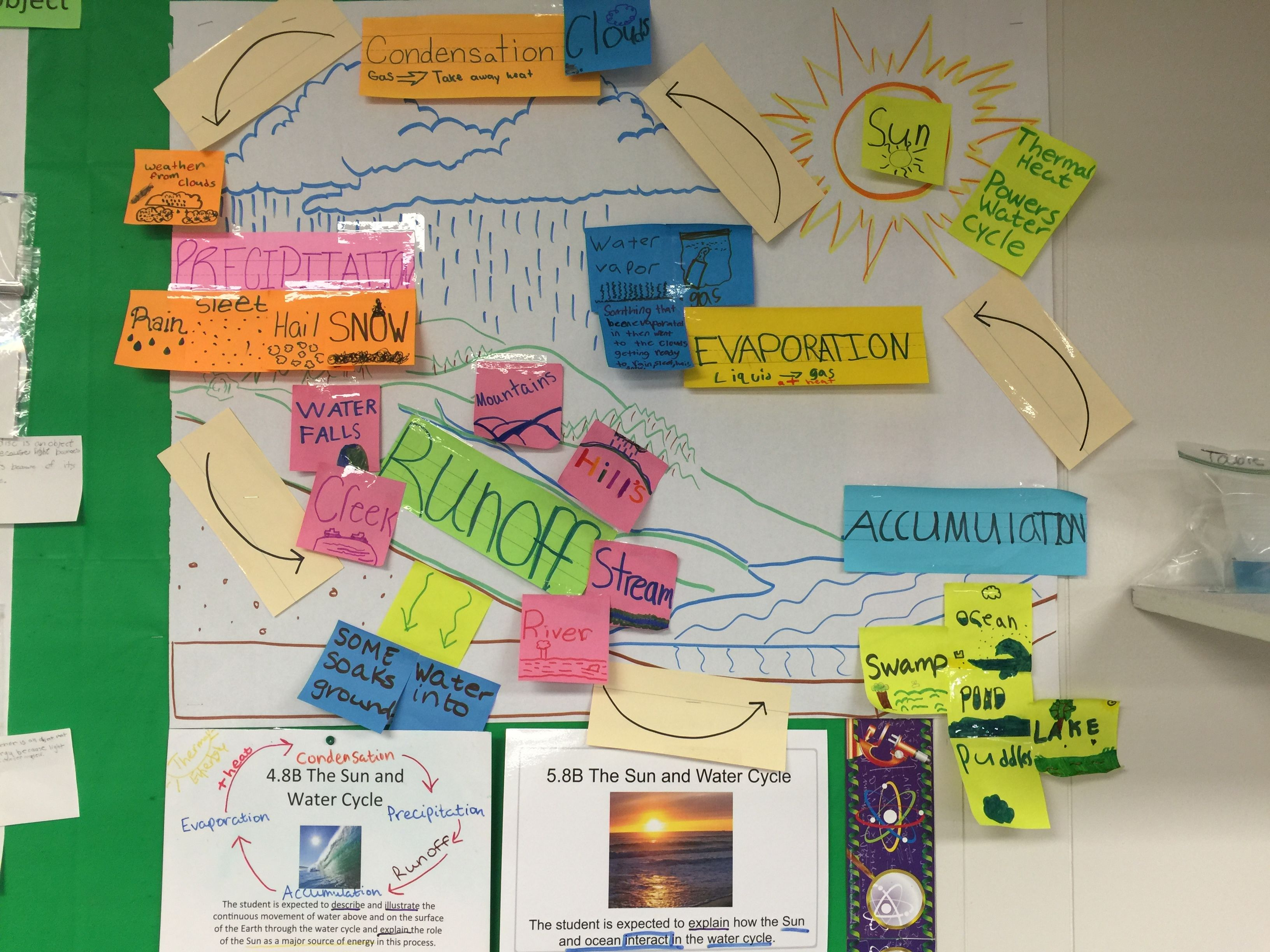 Science Teks 5 8b Water Cycle