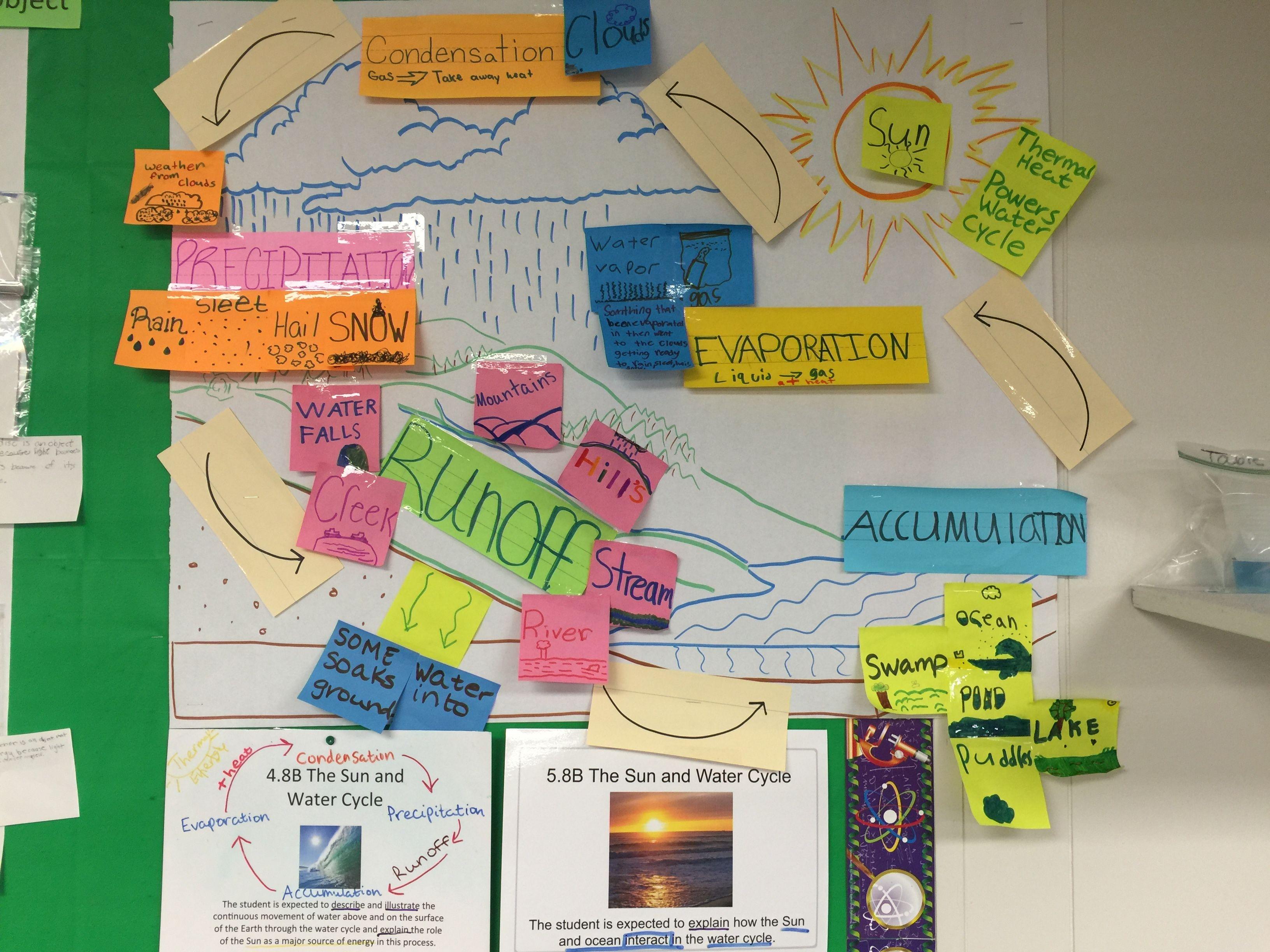 Science Teks 5 8b Water Cycle
