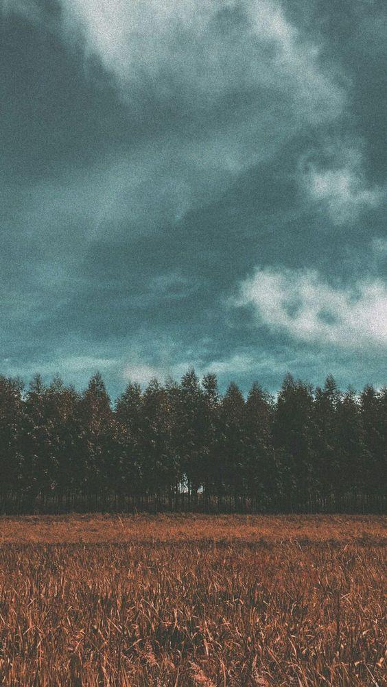 lktcv | Design (@lktcv) • Instagram photos and videos