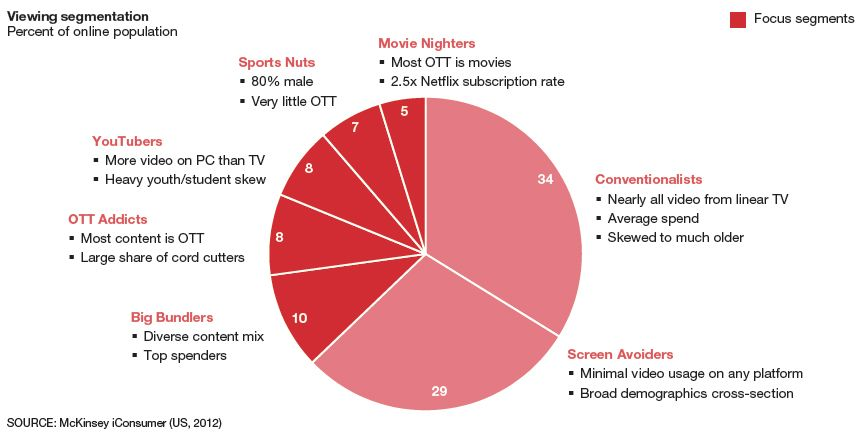 netflix demographic segment Market segmentation and energy efficiency program design prepared by steven j moss mcubed with assistance from  increasingly diverse population of individuals, families and businesses.