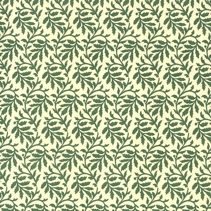 Green Leaf Print Italian Paper ~ Carta Varese Italy