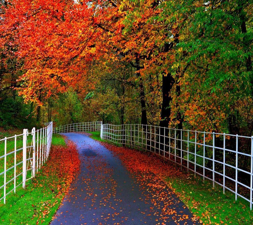 Blackvelvet On Twitter Beautiful Nature Wallpaper Beautiful Nature Nature Wallpaper