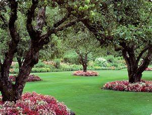 Beautiful Lawn Garden Projects Amazing Gardens Garden Inspiration