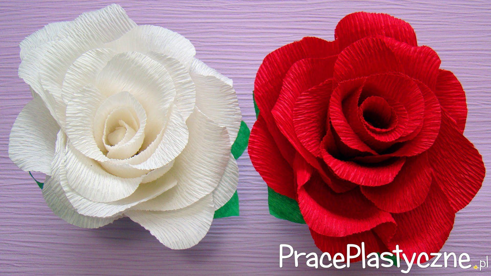 Jak Zrobic Roze Z Krepiny Paper Roses Crepe Paper Roses Paper Flowers