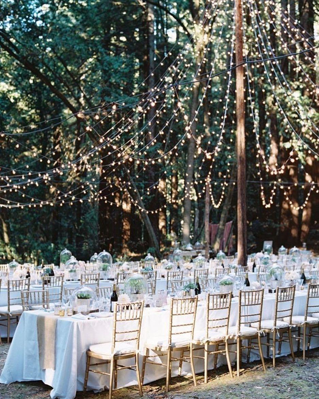 Afternoon Wedding Reception Ideas: Beautiful Outdoor Reception In 2019