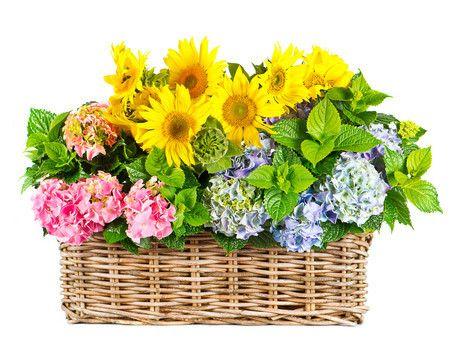 Bloemen in Mand