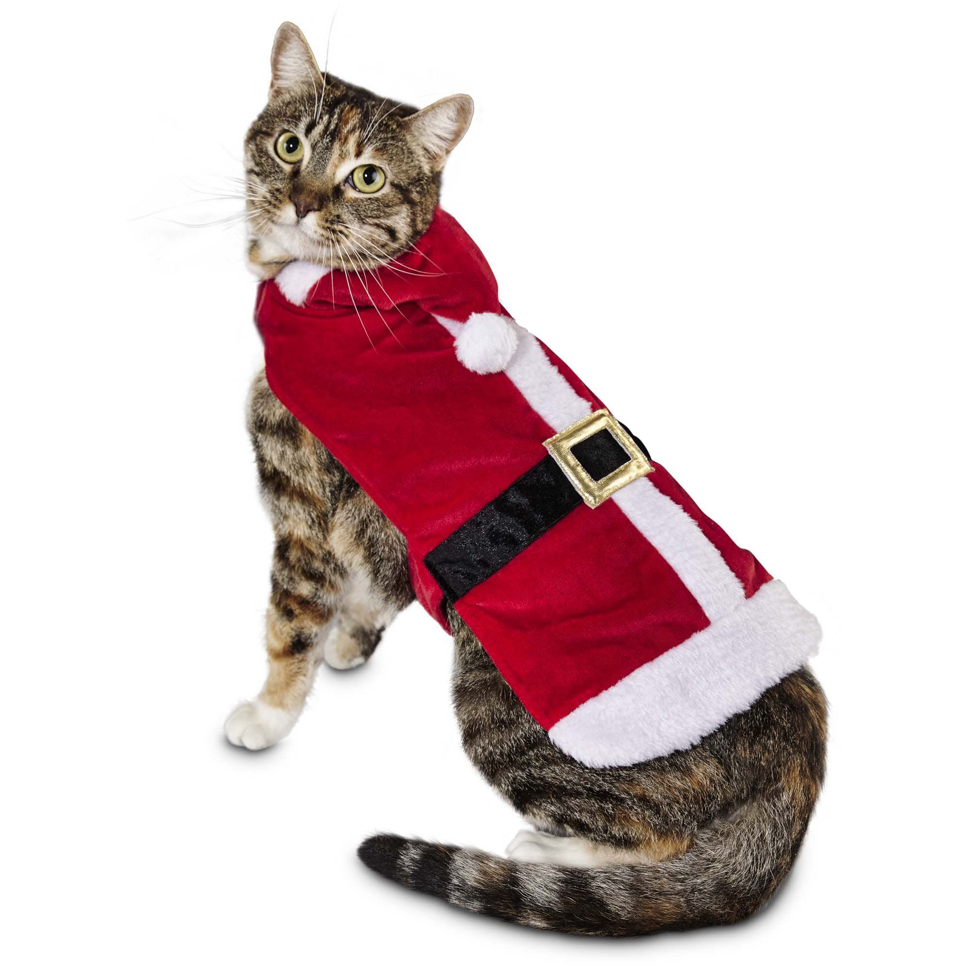 Encourage Your Cat To Stay On The Nice List With Holiday Must Haves From The Petco Exclusive Time For Joy Collection Cat Costumes Petco Cat Clothes