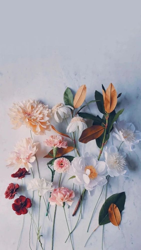 Aesthetic Flower Wallpapers For Phone