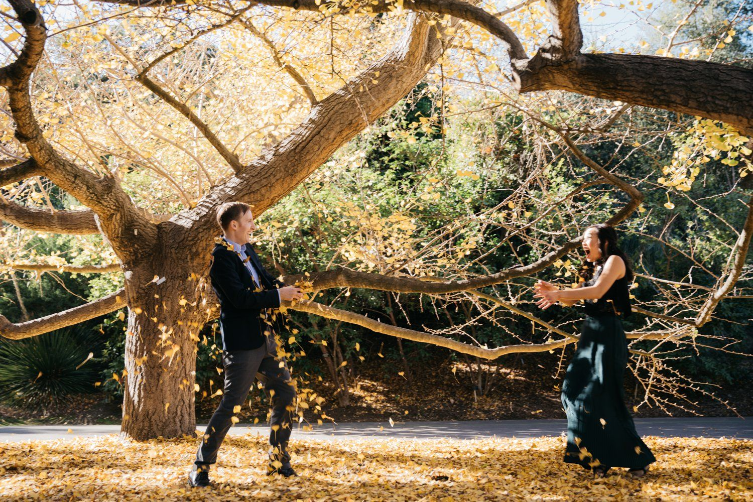 Beautiful Fall Leaves Engagement at UCLA with Jessica and Hans - Los ...