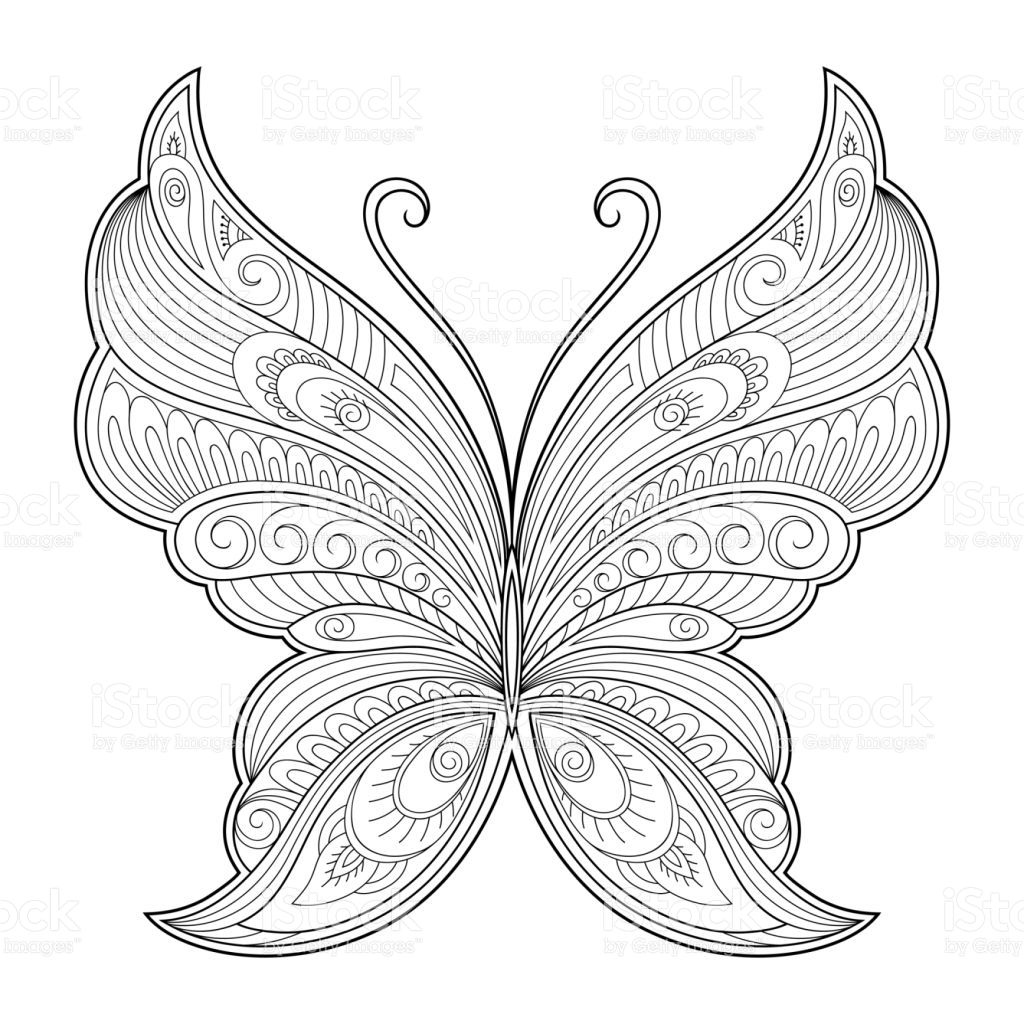 butterfly decorative element pattern for the design of