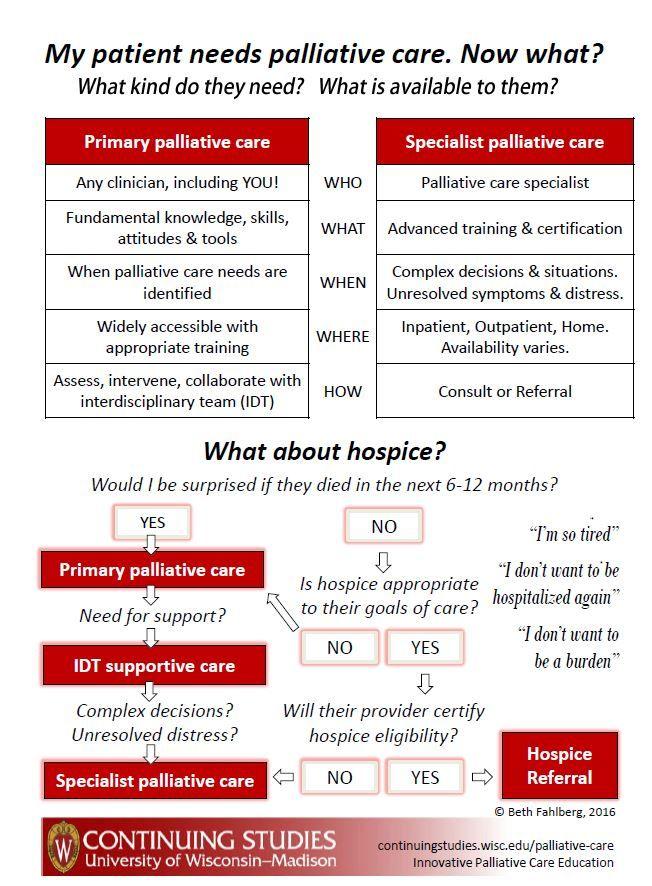 Palliative Care infographic: \