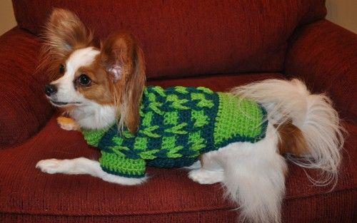 Crochet Patterns Doggoneknit Free Dog Sweater Knitting And