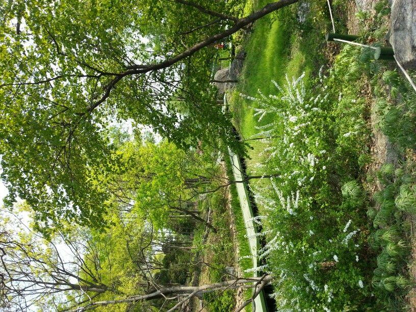 신구대학교 식물원