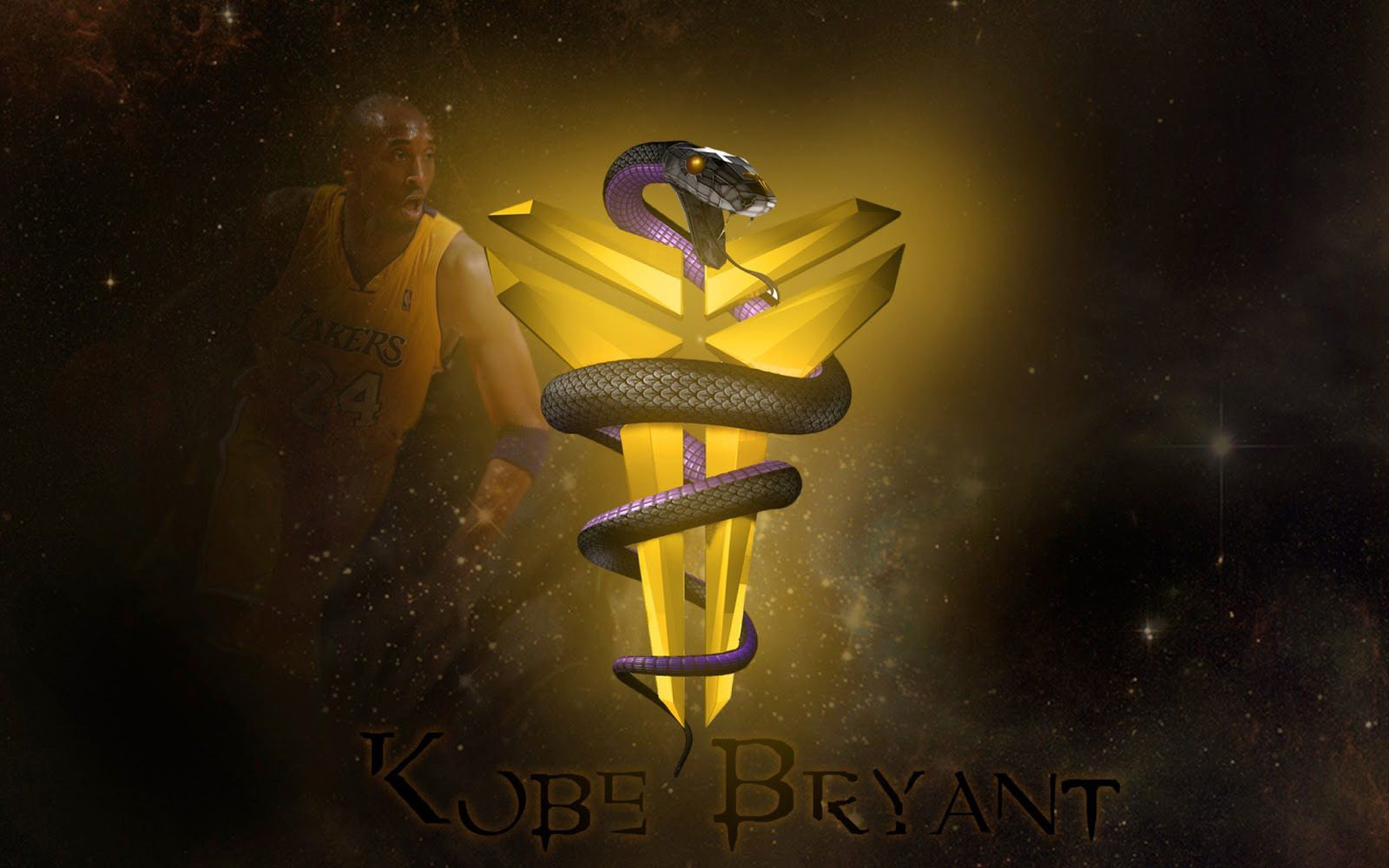 Black Mamba Snake Wallpapers Android Apps on Google Play