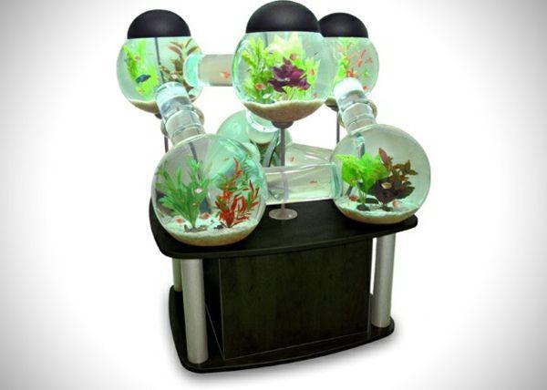 ▷ tolles labyrinth aquarium | aqarium | pinterest, Modern Dekoo