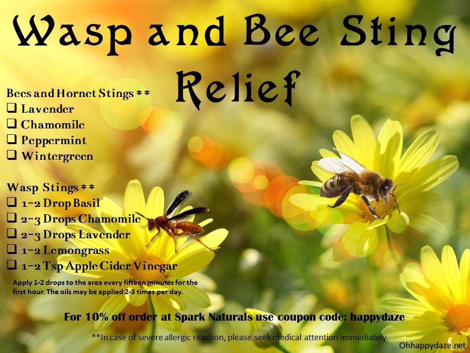 Wasp And Bee Sting Relief Bee Sting Relief Sting Relief Bee Sting