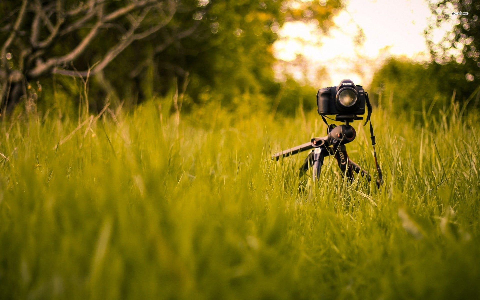 Hd wallpaper camera - Canon Wallpapers Full Hd Wallpaper Search Canon Cameras Eos Pinterest Hd Wallpaper