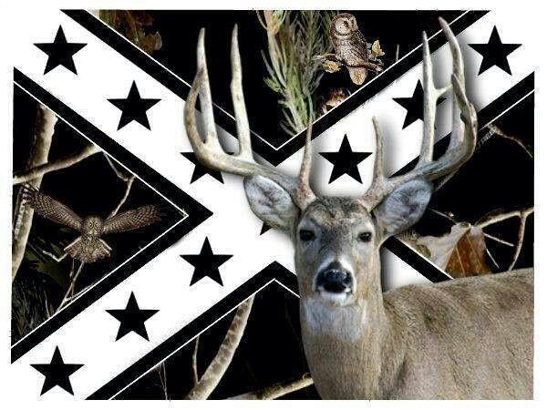 Pin On Deer Pics