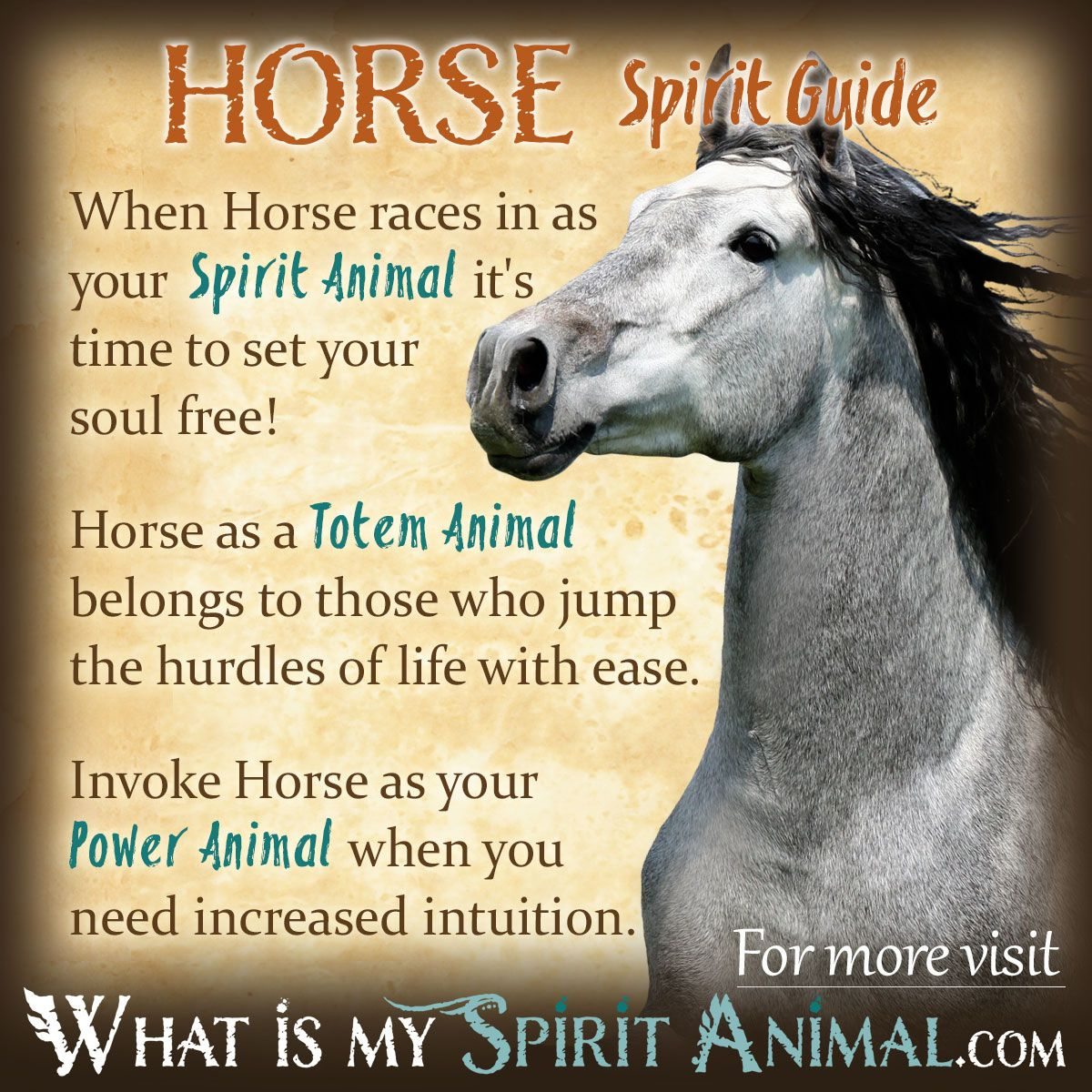 Horse Spirit Totem Power Animal Symbolism Meaning 1200x1200