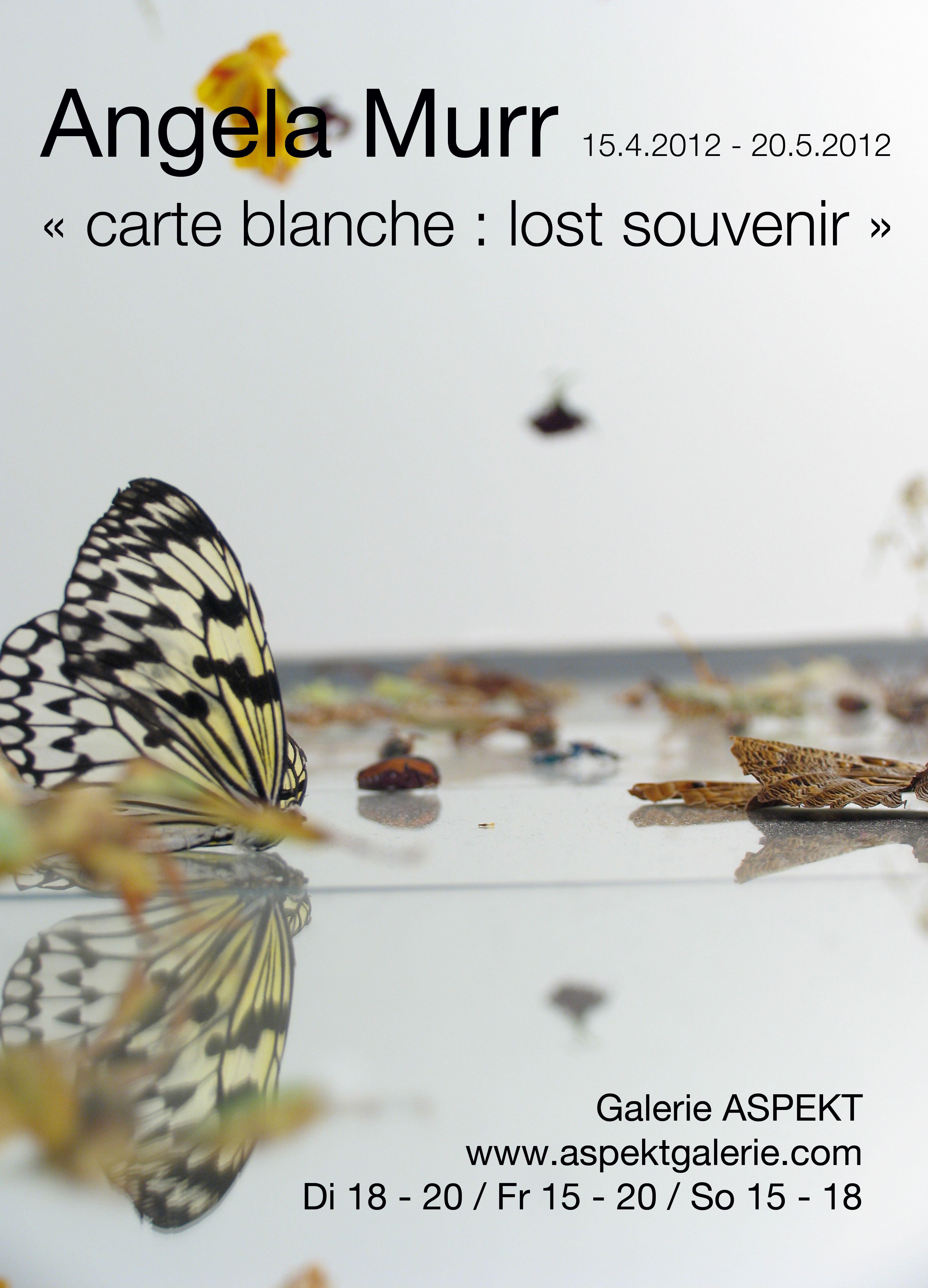 "Ausstellungsplakat Angela Murr ""carte blanche : lost souvenir"""