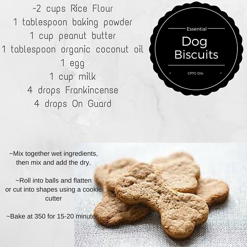 Doterra Dog Treats Dogs Doterra Treats Biscuits Coconut Oil