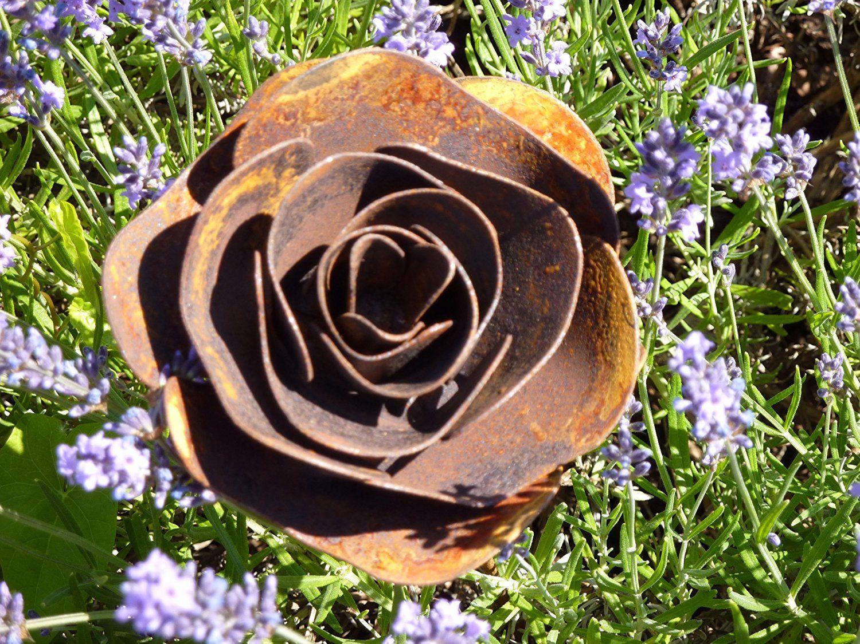 Albert Hechinger Edelrost Rose Metal, Roses