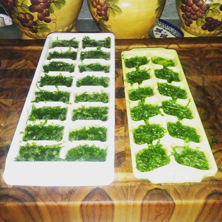 Great way to save those extra herbs before winter kills them off!   1. A little olive oil.  2. Lemon juice (maybe).  3. Salt and pepper!  4. Freeze them and put them in a Ziploc bag when done!   #homefarmideas #herb #oliveoil #pesto #farm #gardening #farms #farmers #farming #farmlife #garden #gardens #gardening #mygarden #organic #organicfood #organicgardening #organics #grow #growth #growing #homestead #homesteading #livestock #plant #container #garden #preserving #cleaneating #eatclean…