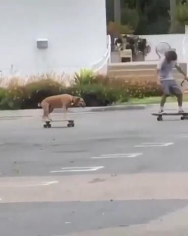 You'll never be alone skateboarding if he's with y