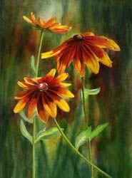 Pacific Northwest Watercolors Watercolor Landscapes,Floral Prints,Cards,Alaska Art