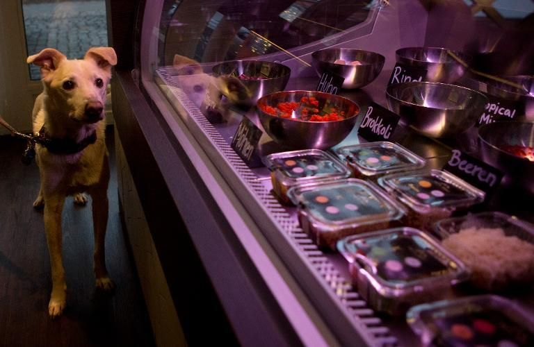 A Dog Named Pivo Looks At The Pets Deli Food Shop For Dogs And Cats In Berlin S Gruenewald District On January 2 2014 Deli Food Food Shop Restaurant Catering