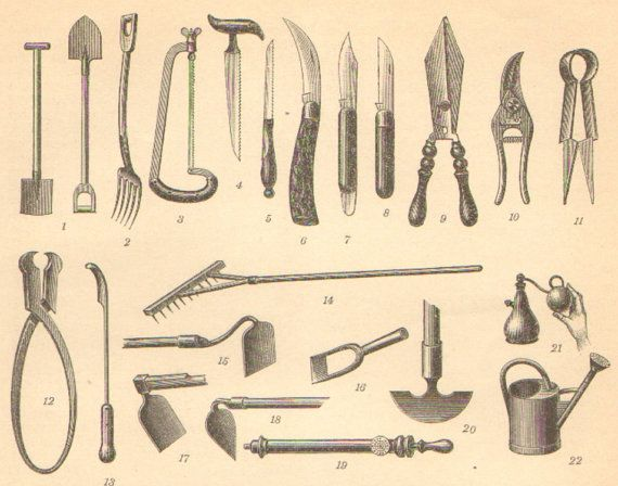 1905 Gardening Tools Antique Engraving To By CabinetOfTreasures