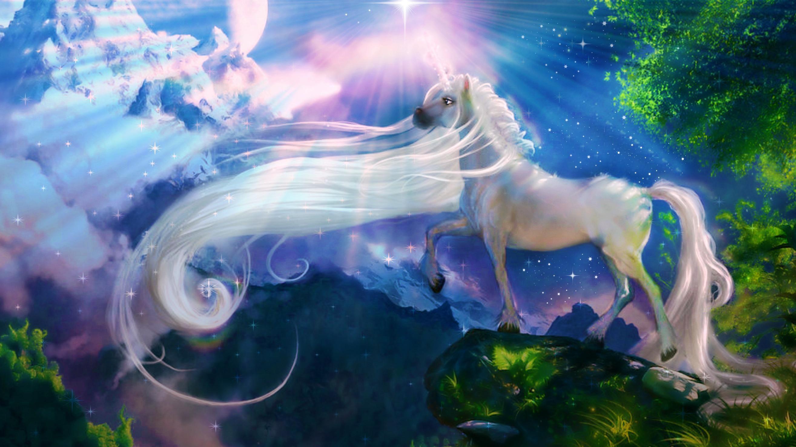 Unicorn Fantasy Hd Wallpaper Unicorn Wallpaper Unicorn Backgrounds Unicorn Fantasy