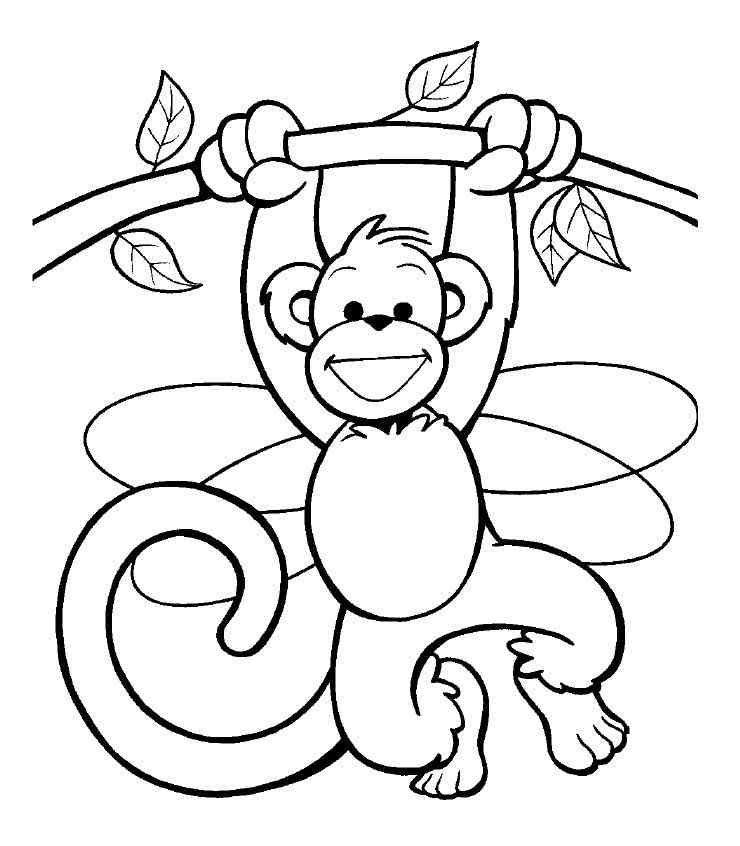 Картинка обезьянка раскраска