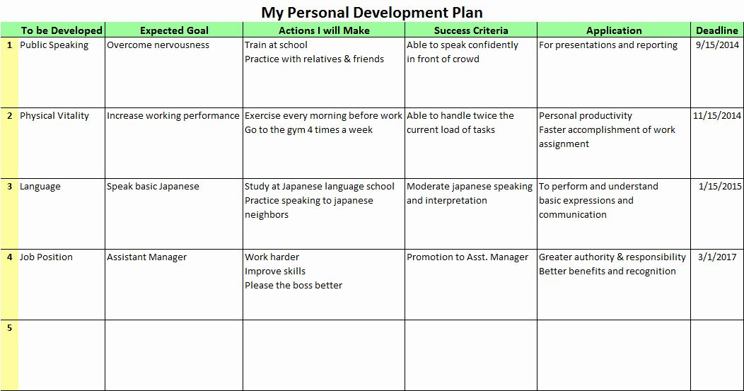 Business Development Plan Template Luxury Personal