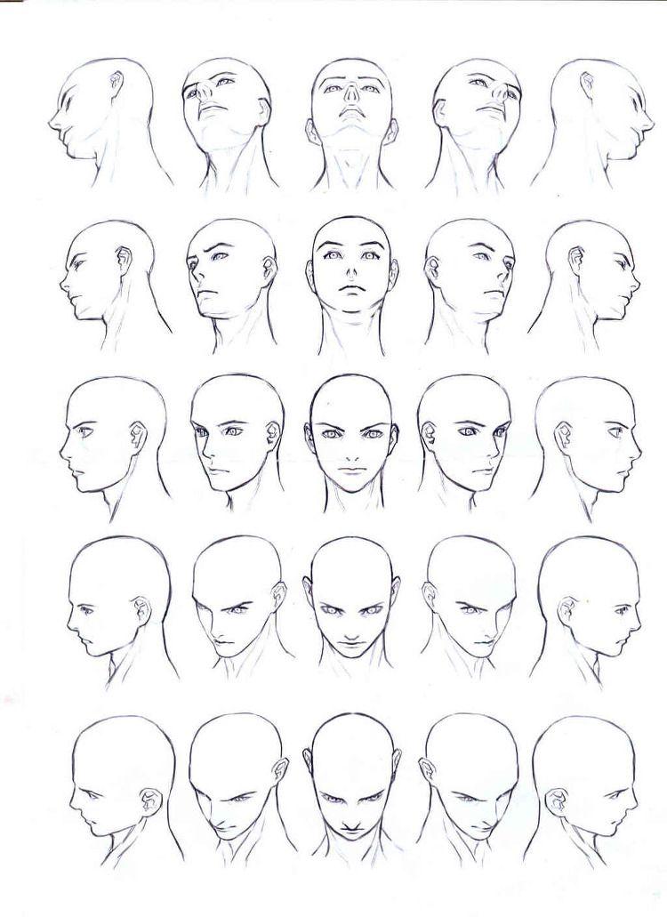 drawing face body pinterest zeichnen anatomie zeichnung und zeichnen. Black Bedroom Furniture Sets. Home Design Ideas