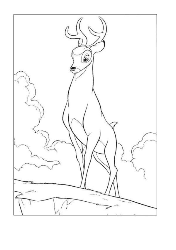 Dibujos para Colorear Disney 234 | Dibujos para colorear para niños ...