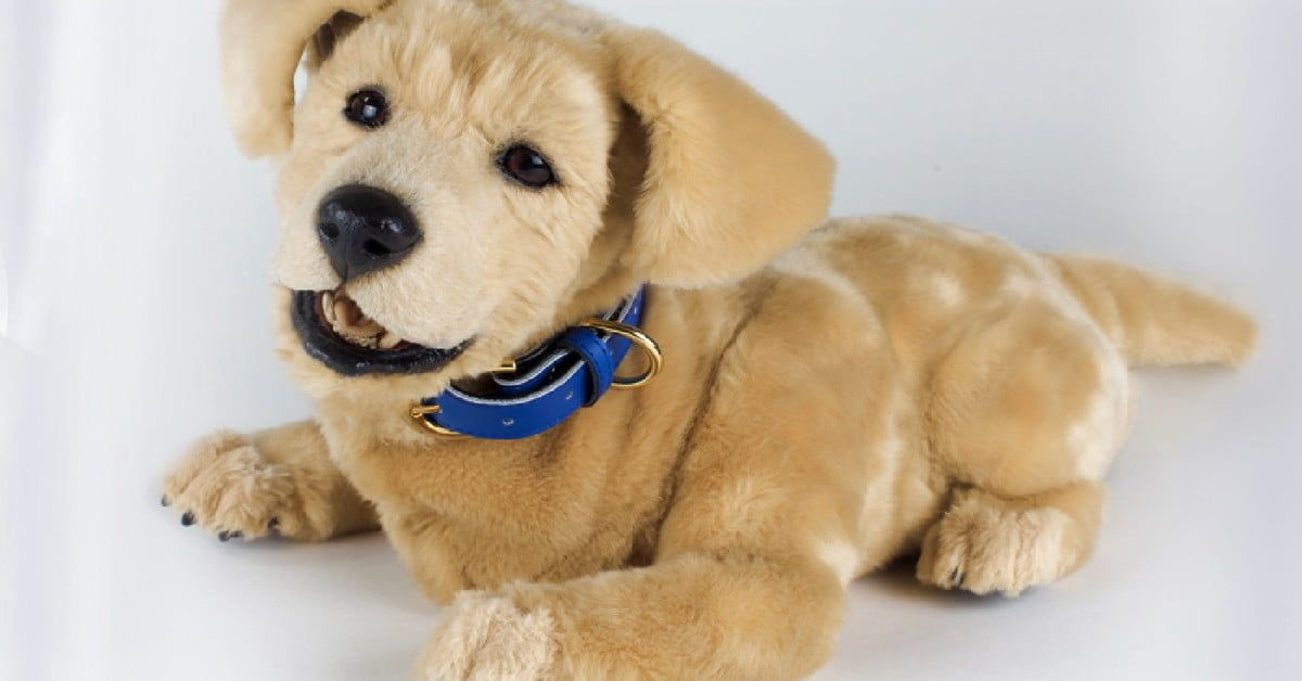 Tombot Is The Hyper Realistic Dog Robot That Puts Spot To Shame