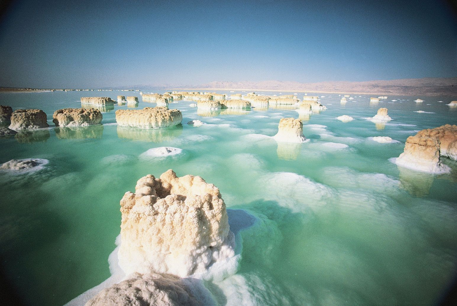 salt formations in the dead sea.