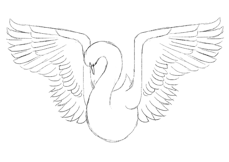 Photoshop tutorial: Create a beautiful bird illustration