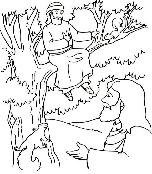 Zacchaeus Coloring Page Sunday School Coloring Pages Jesus
