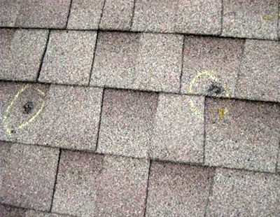 The Dark Circles Spots Are Where Hail Has Scarred And Damaged The Roofing Shingles Roof Shingles Roofing Shingling