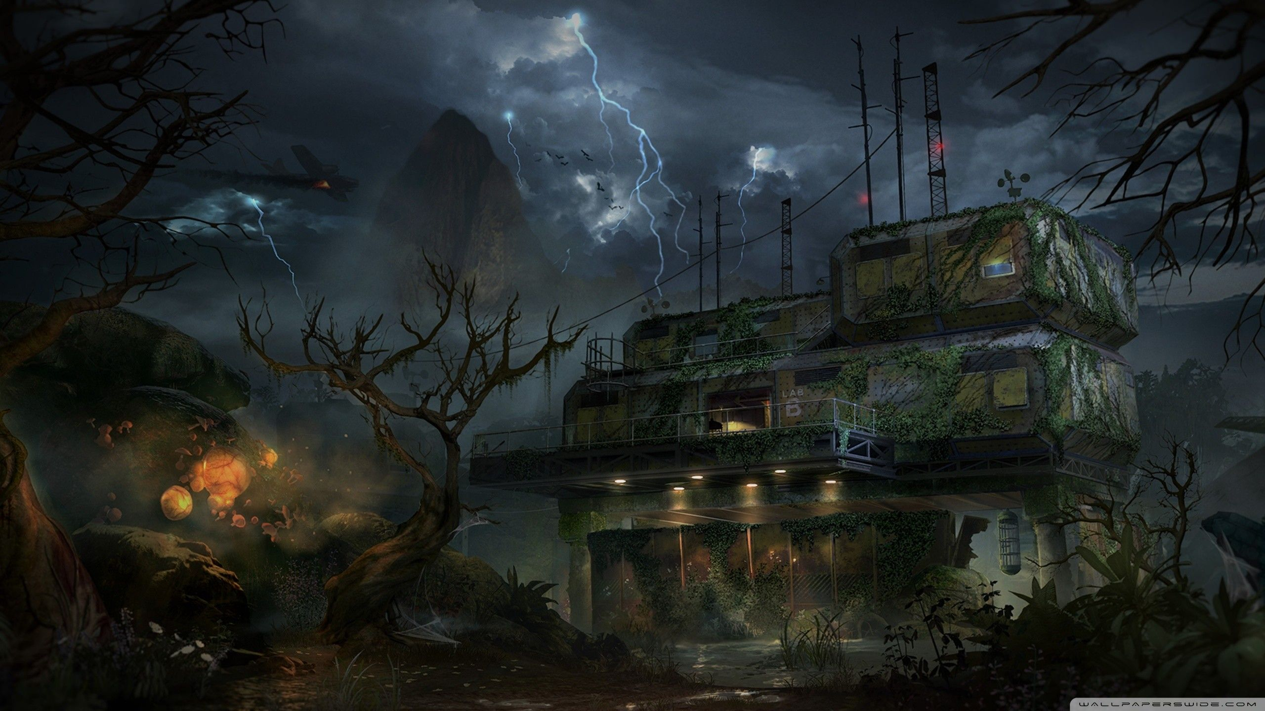 2560x1440 Hd 16 9 Call Of Duty Call Of Duty Zombies Zombie